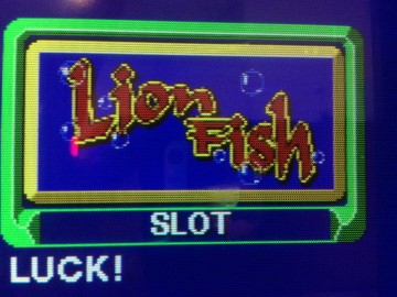 Lion Fish Slot Machine Game